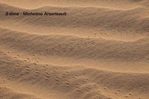 03 Minimalisme Micheline Arseneault