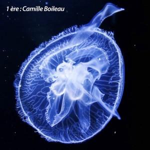 01 Bleu Camille Kubina Boileau