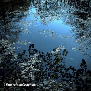 03 Bleu ©Mario Castonguay