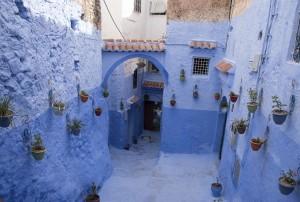 43 Bleu Micheline Arseneault